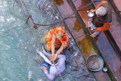 Haridwar Indien - mars 11, 2017: oidentifierat folk som badar och tar tvagningar i Gangeset River på de heliga ghatsna i Haridw Royaltyfri Fotografi
