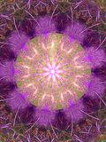 Harige purpere mandala Royalty-vrije Stock Fotografie