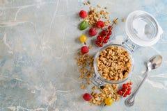 Harina de avena hecha en casa sana con las bayas para el desayuno imagen de archivo
