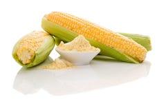 Harina de maíz en cuenco con las mazorcas de maíz frescas Imagenes de archivo
