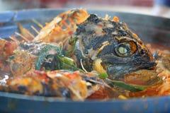 Harina de pescado fotografía de archivo libre de regalías