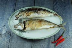 Harina de pescado frita Fotos de archivo