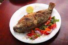 Harina de pescado de la Tilapia Imagen de archivo