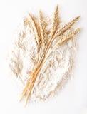 Harina de trigo Imagen de archivo libre de regalías