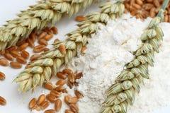 Harina de trigo, oídos y granos foto de archivo