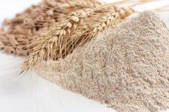 Harina de trigo y oídos integrales del trigo imagenes de archivo