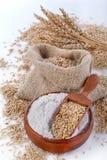 Harina del trigo integral imagenes de archivo