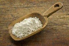 Harina libre de la quinoa del gluten Fotos de archivo libres de regalías
