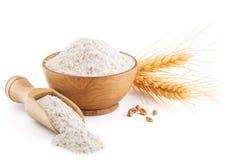 Harina y oídos de trigo entera del grano aislados en blanco Fotografía de archivo