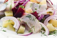Haringen Salat stock afbeeldingen