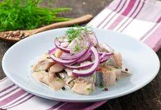 Haringensalade met ui royalty-vrije stock foto