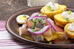 Haringensalade met uien en aardappel in de schil stock foto's