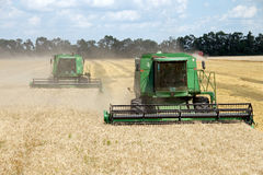 HARKÌV, UCRAINA - 12 LUGLIO 2011: Raccolta del giacimento di grano a Harkìv Oblast in Ucraina Immagine Stock
