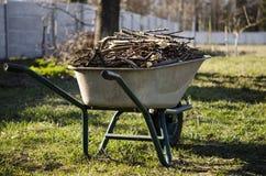 Harken der Herbstbl?tter Beschnittene Niederlassungen von jungen Bäumen liegen in einer Schubkarre, die im Garten steht lizenzfreie stockfotos