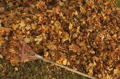 Harken von Blättern Stockfotos
