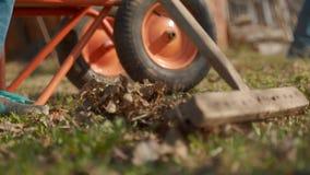 Harken von Bl?ttern unter Verwendung der R?hrstange Person, die um Gartenhaus-Yardgras sich k?mmert Landwirtschaftlich, Gartenarb stock footage