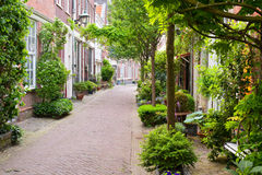 harlem lilla gator Arkivbild