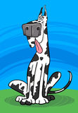Harlequin dog cartoon illustration Stock Images