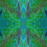 Harlequin Macaw feathers. Beautiful green and blue bird feathers, Harlequin Macaw feathers Stock Image