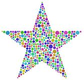 Harlequin Star Royalty Free Stock Photo
