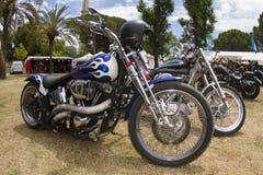 Harley-custom Royalty Free Stock Photo