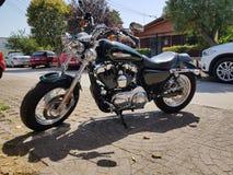 Harley Dadvinson стоковая фотография