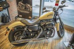 2014 Harley-Davidson, σίδηρος Sportster Στοκ εικόνα με δικαίωμα ελεύθερης χρήσης
