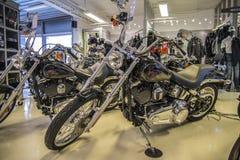 2007 Harley-Davidson, συνήθεια Softail Στοκ Φωτογραφία