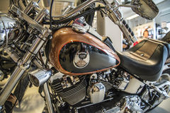 2008 Harley-Davidson, aduana de Softail Imágenes de archivo libres de regalías