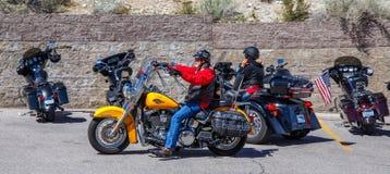 Harley Davidson chopper. Royalty Free Stock Photos