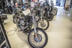 2009 Harley-Davidson, coutume de Softail images libres de droits