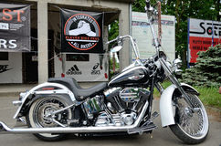 Free Harley-Davidson Eleven Bike Fest Royalty Free Stock Images - 71775399