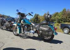 Harley Davidson - la signora nel verde Immagini Stock Libere da Diritti