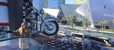 Harley Davidson Las Vegas Cafe Shot Imagenes de archivo