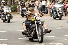 Harley-Davidson Motorcycles Arkivfoton
