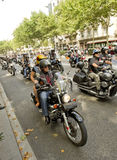 Harley-Davidson Motorcycles Arkivfoto