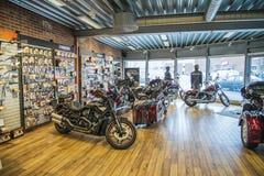2013 Harley-Davidson, natt Rod Special Royaltyfri Fotografi