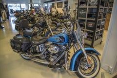 2011 Harley-Davidson, Softail arv Arkivbilder