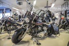 2007 Harley-Davidson, Softail-Fett-Junge Lizenzfreie Stockfotografie