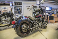 2007 Harley-Davidson, Softail-Fett-Junge Lizenzfreie Stockbilder