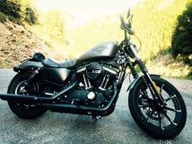 Harley Davidson sportster Στοκ Εικόνες