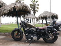 Harley Davidson Sportster Forty-Eight parked in Lima Stock Photography