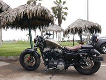 Harley Davidson Sportster Forty-Eight parkerade i Lima arkivbild