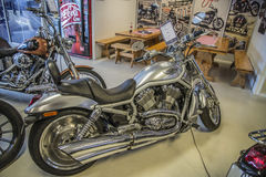 2003 Harley-Davidson, V-stång Royaltyfria Foton