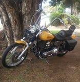 Harley Heaven Royaltyfria Bilder