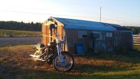 HarleyDavidson Lizenzfreie Stockfotos