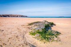 Harlyn bay Cornwall england uk. Royalty Free Stock Photos