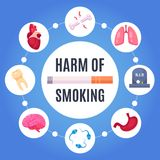 Harm Of Smoking Design Concept. Harm of smoking round design concept with  human organs sensitive to disease from nicotine cartoon vector illustration Royalty Free Stock Photos