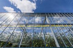 Harmelen det glass växthuset för tomaten Arkivbilder