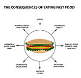 The harmful effect of fast food on the human body. Infographics. Vector illustration on isolated background Stock Images